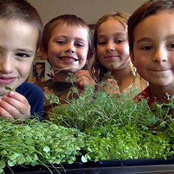 Children Surrounding Micro Greens